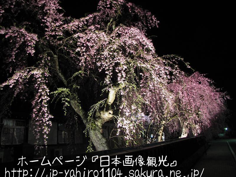 秋田・夜の角館武家屋敷2