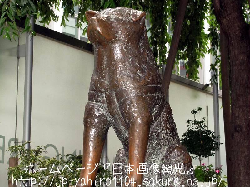 東京・渋谷駅前のハチ公像2