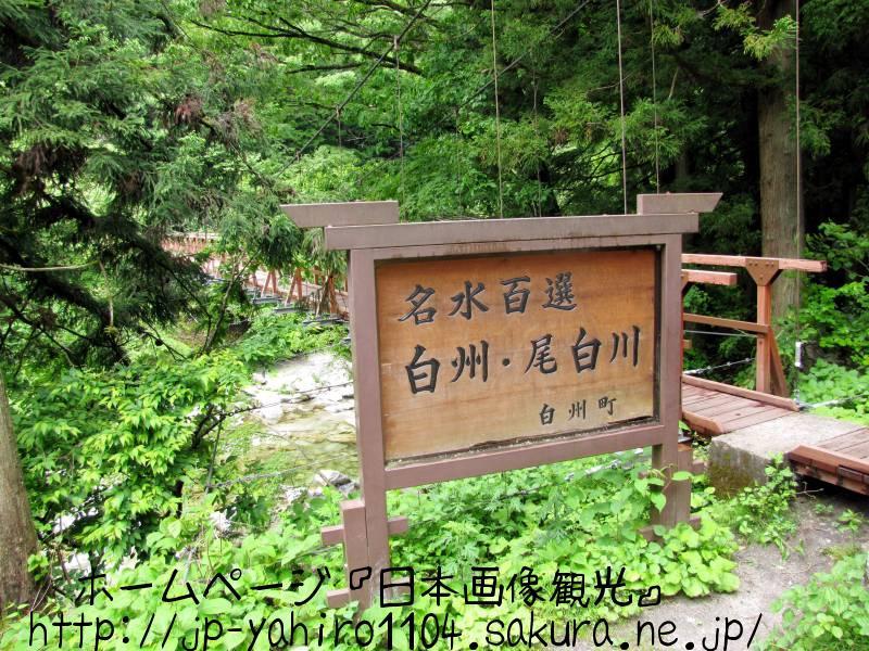山梨・日本の名水百選、尾白川渓谷1