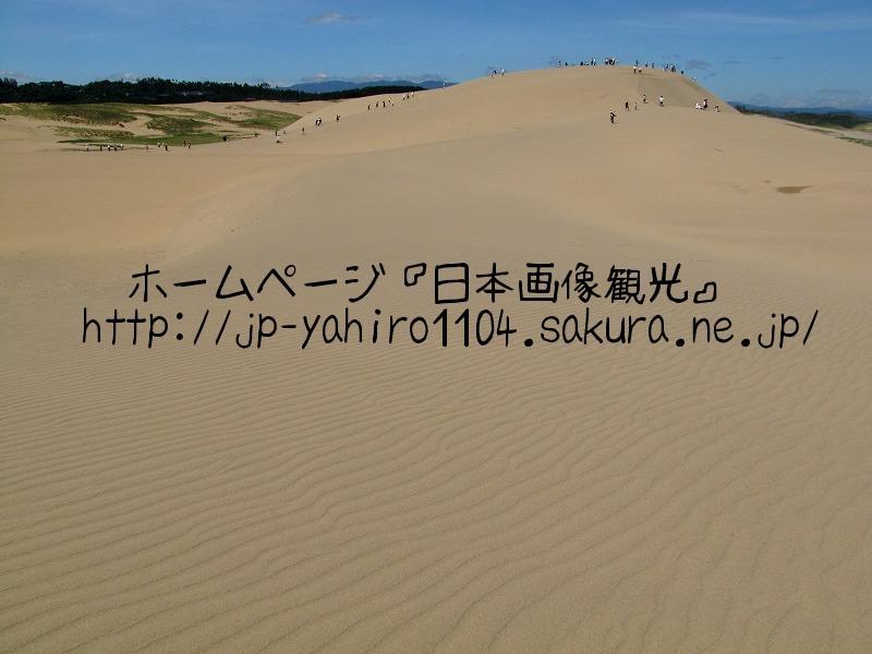 鳥取・灼熱の鳥取砂丘1