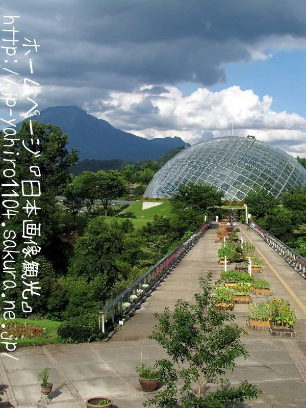 鳥取・とっとり花の回廊から見た大山1