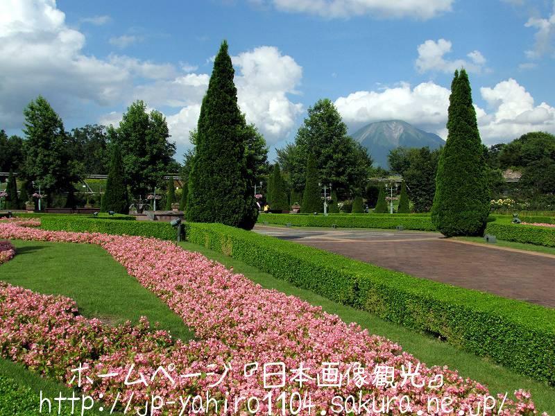 鳥取・とっとり花の回廊から見た大山2