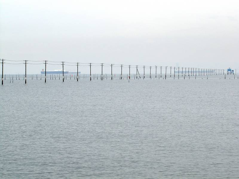 千葉・海の中に立ち並ぶ電柱3