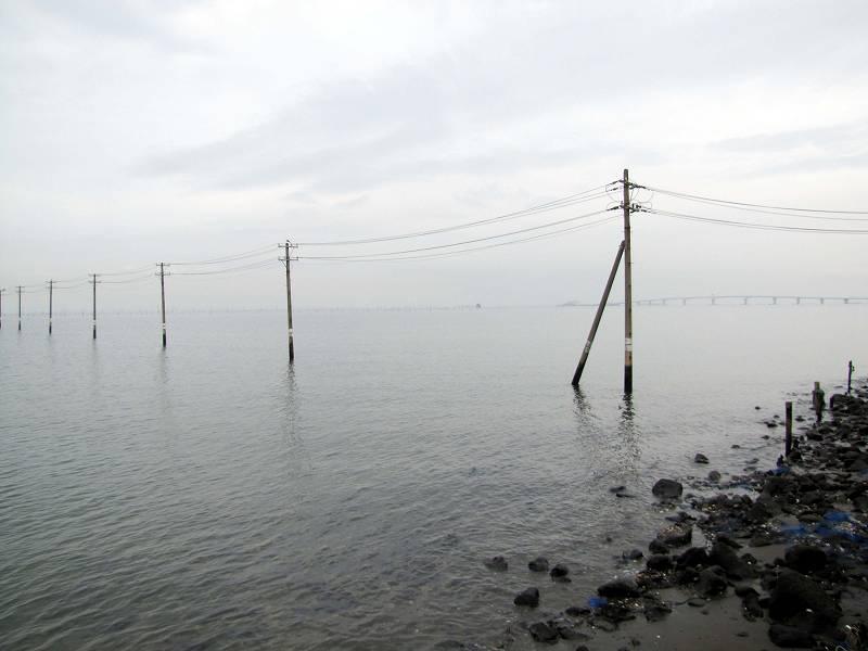千葉・海の中に立ち並ぶ電柱2