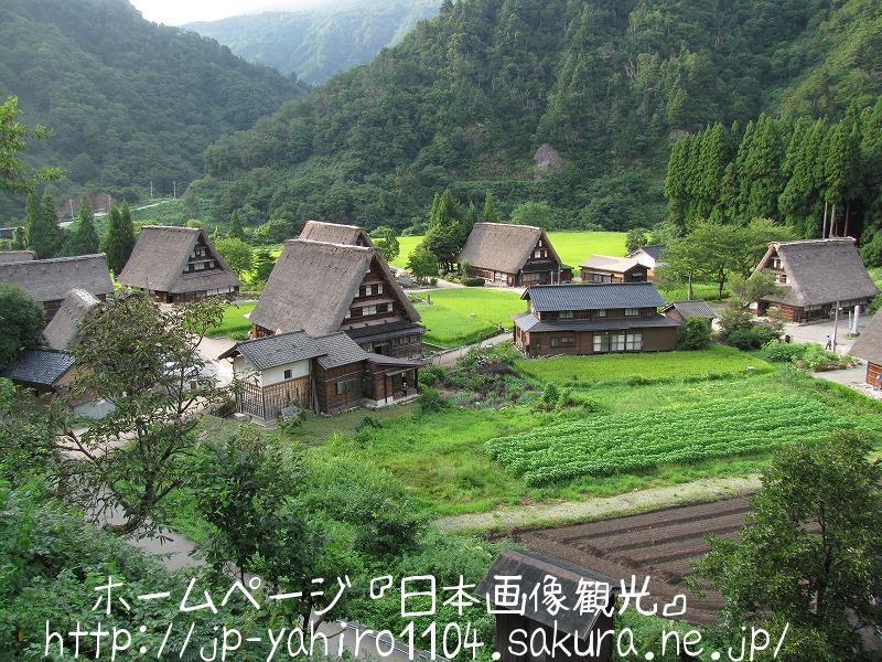 富山・世界遺産、五箇山 菅沼集落の合掌造り1