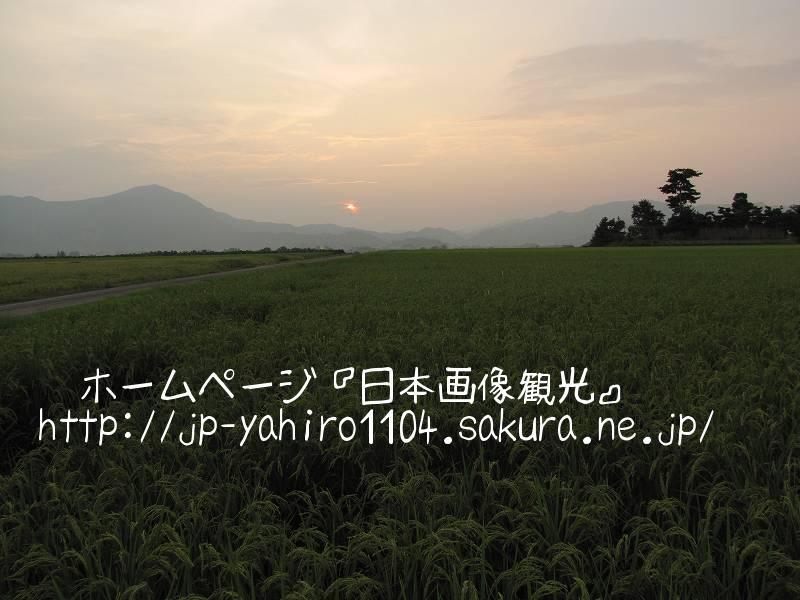 福井・大野市郊外の夕暮れの田んぼ