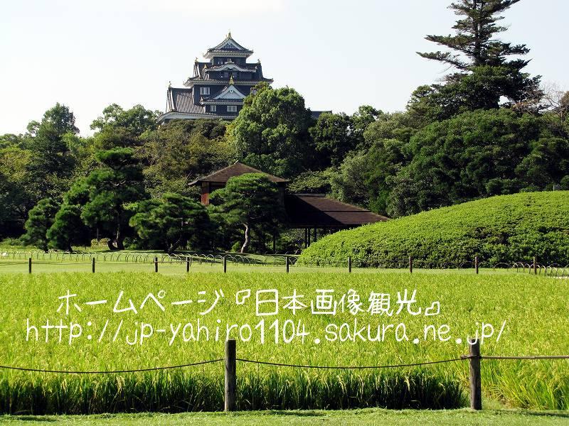 岡山・日本三名園、後楽園(井田)