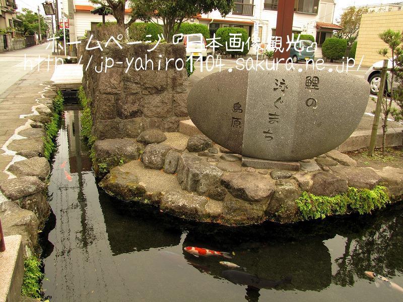 長崎・島原の鯉の泳ぐ街2