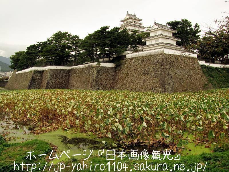 長崎・小藩なのに堅牢な島原城1