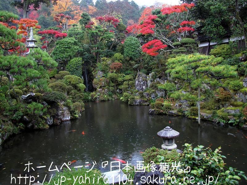鳥取・智頭宿の石谷家住宅庭園