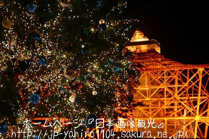 東京・東京タワーとクリスマスツリー
