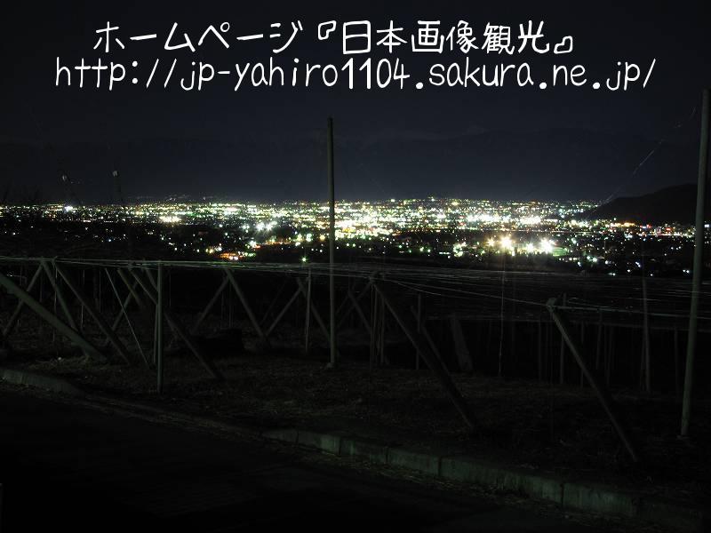 山梨・葡萄畑ごしの甲府盆地夜景
