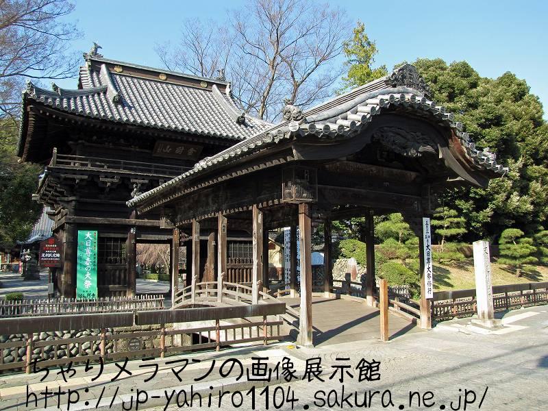 栃木・足利の鑁阿寺(太鼓橋と山門)