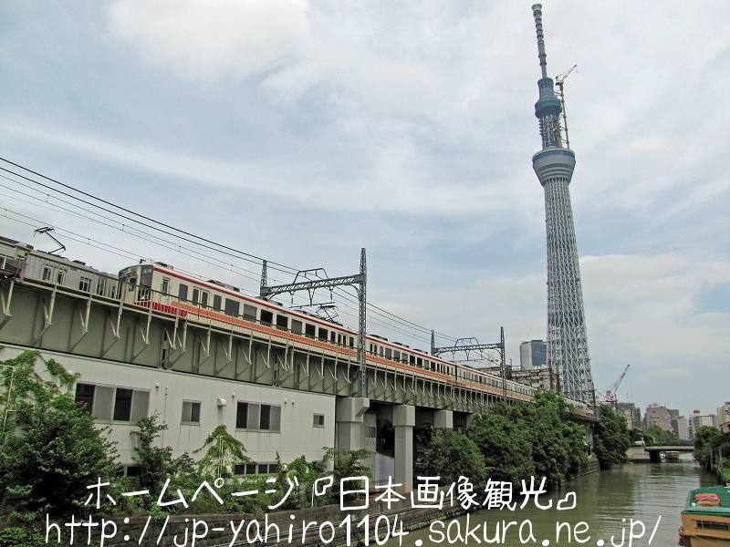 東京・クレーン解体中の東京スカイツリー2