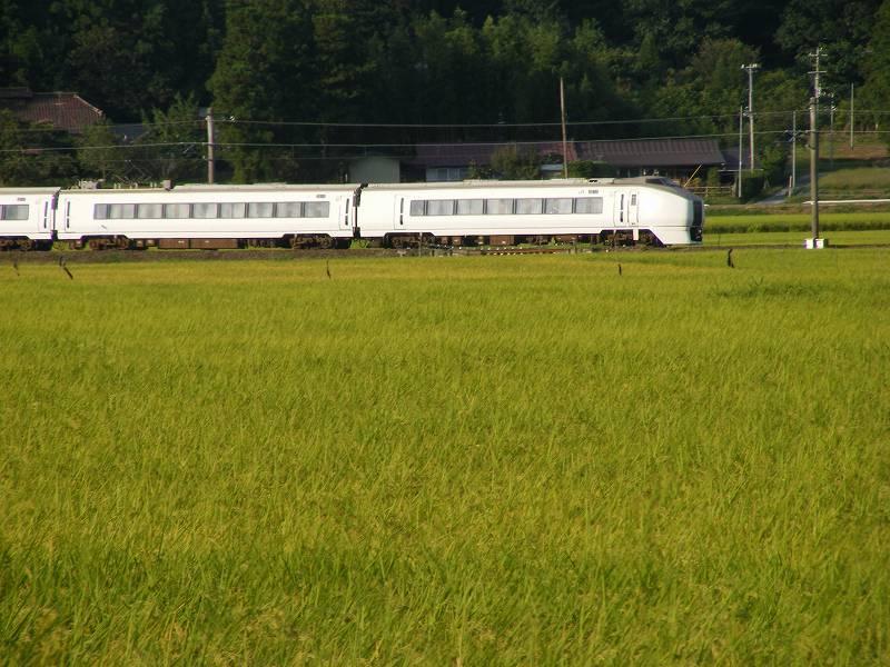 福島【過去画像】在りし日の相馬市の田んぼ2