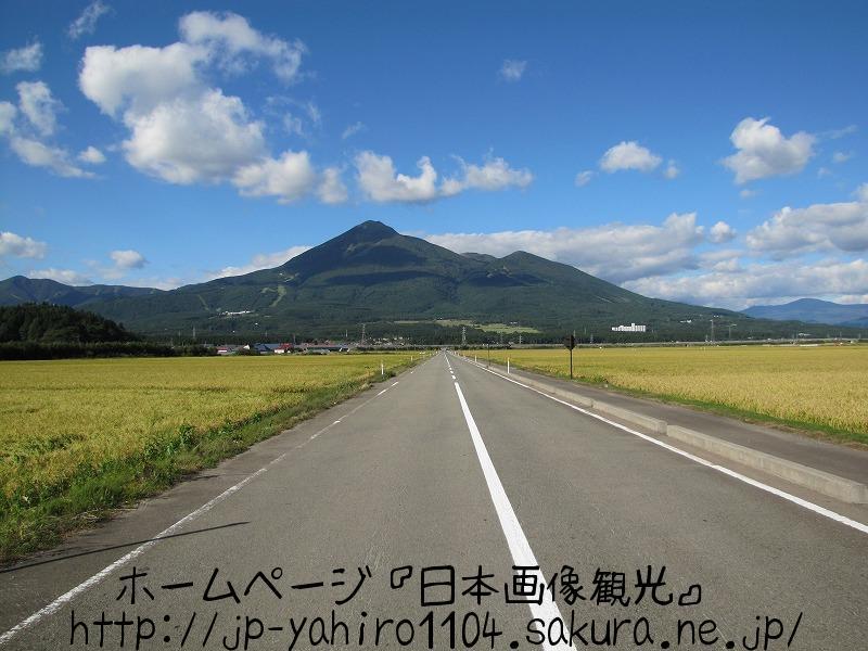 福島・会津磐梯山と黄金の穂1