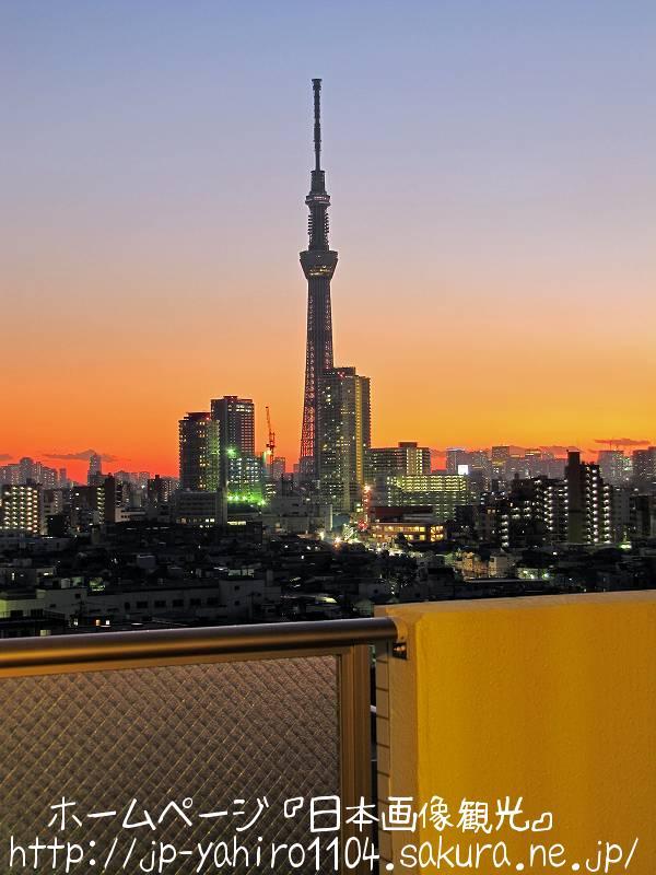 東京・夕暮れの東京スカイツリー