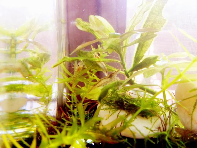 fc2blog_20120911165548fe0.jpg