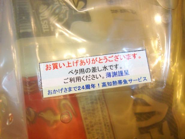fc2blog_2012111021071922b.jpg