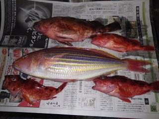 09_20111220081540.jpg