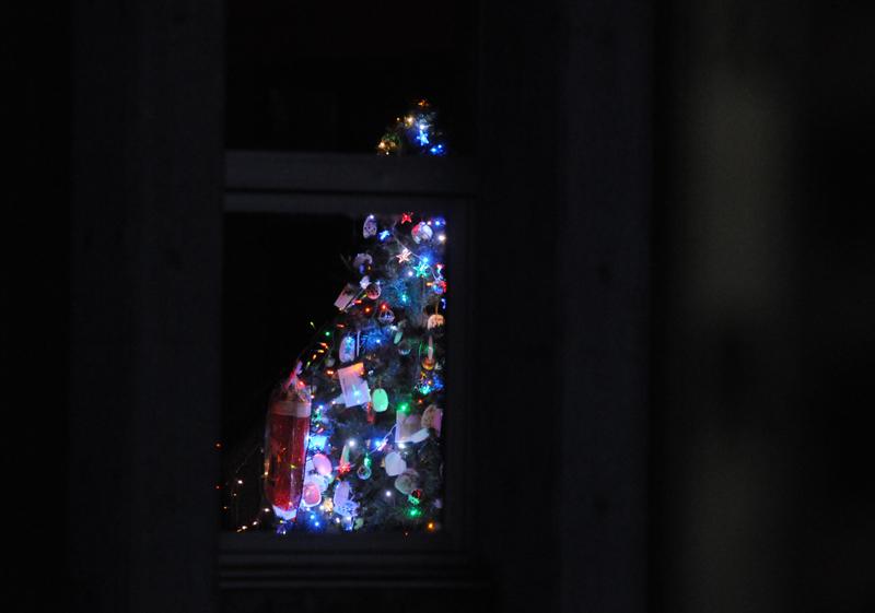 大川小_クリスマスツリー_5