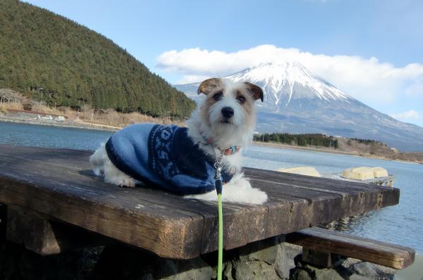富士山とゼロ 田貫湖