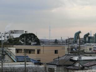 13.12.09 江戸川サイクリングロード 004