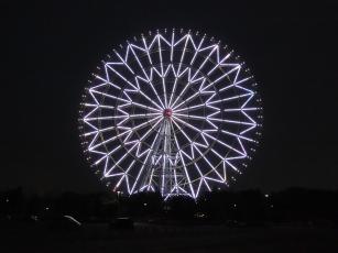13.12.09 江戸川サイクリングロード 011