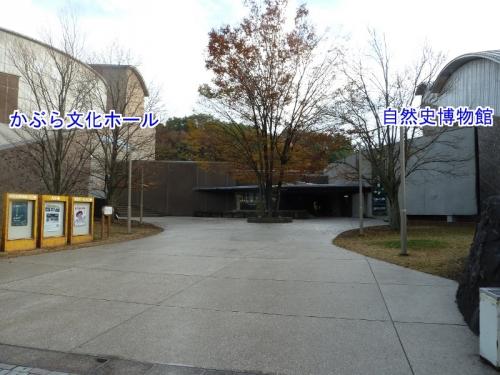 左「かぶら文化ホール」、右「自然史博物館」が写った入口付近