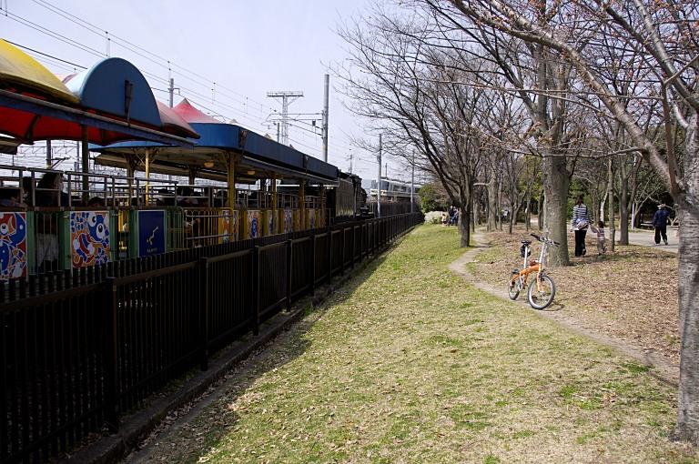 梅小路ポタで桜 20120402