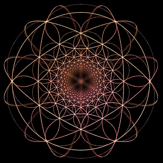 hyperbolic_flower_of_life_by_perrelet-d3cu63o.jpg