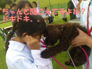DSC_0066_convert_20110923211521.jpg