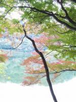 20111127_SBSH_0001.jpg