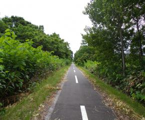 自転車道路3