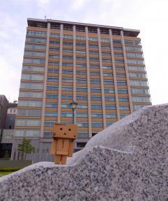 県庁とダンボー
