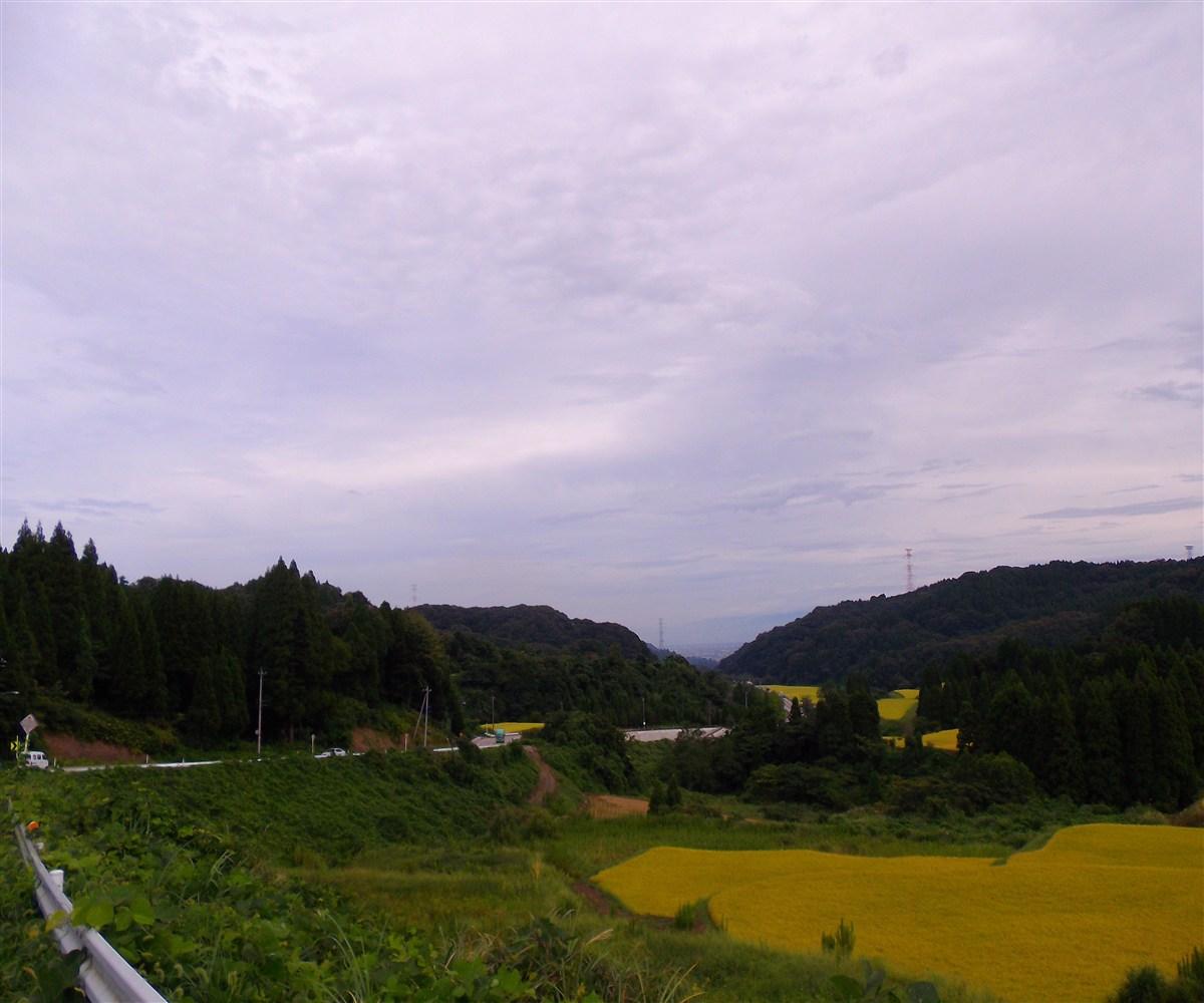 IMGP3350.jpg