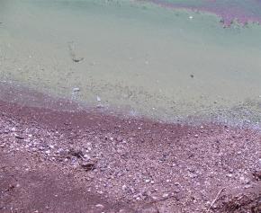 宍道湖の水