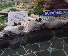 ミリオネア温泉