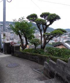 上からの景色2