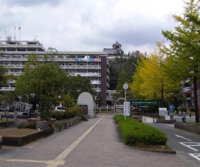 高知県庁遠目