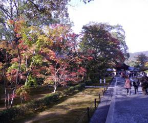 金閣寺への道