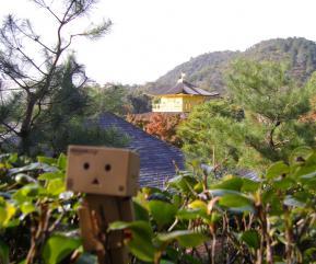 金閣寺とダンボー2