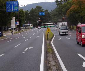 県庁前の道路にシカ注意