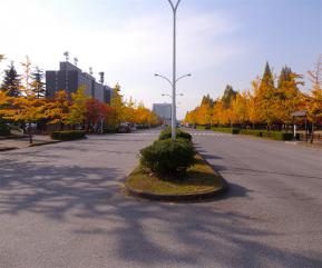 県庁への道