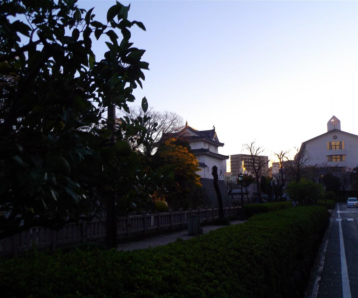 IMGP6681.jpg