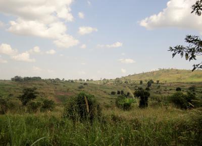 ウガンダの風景