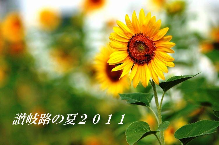 2011 夏福岡p 030
