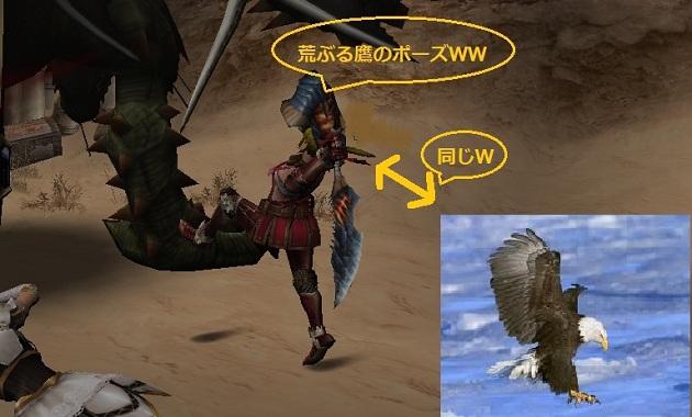 荒ぶる鷹のポーズ ブログ用