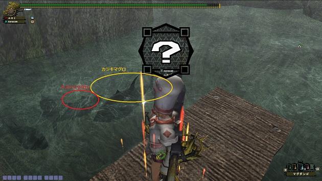 魚の影の見分け方