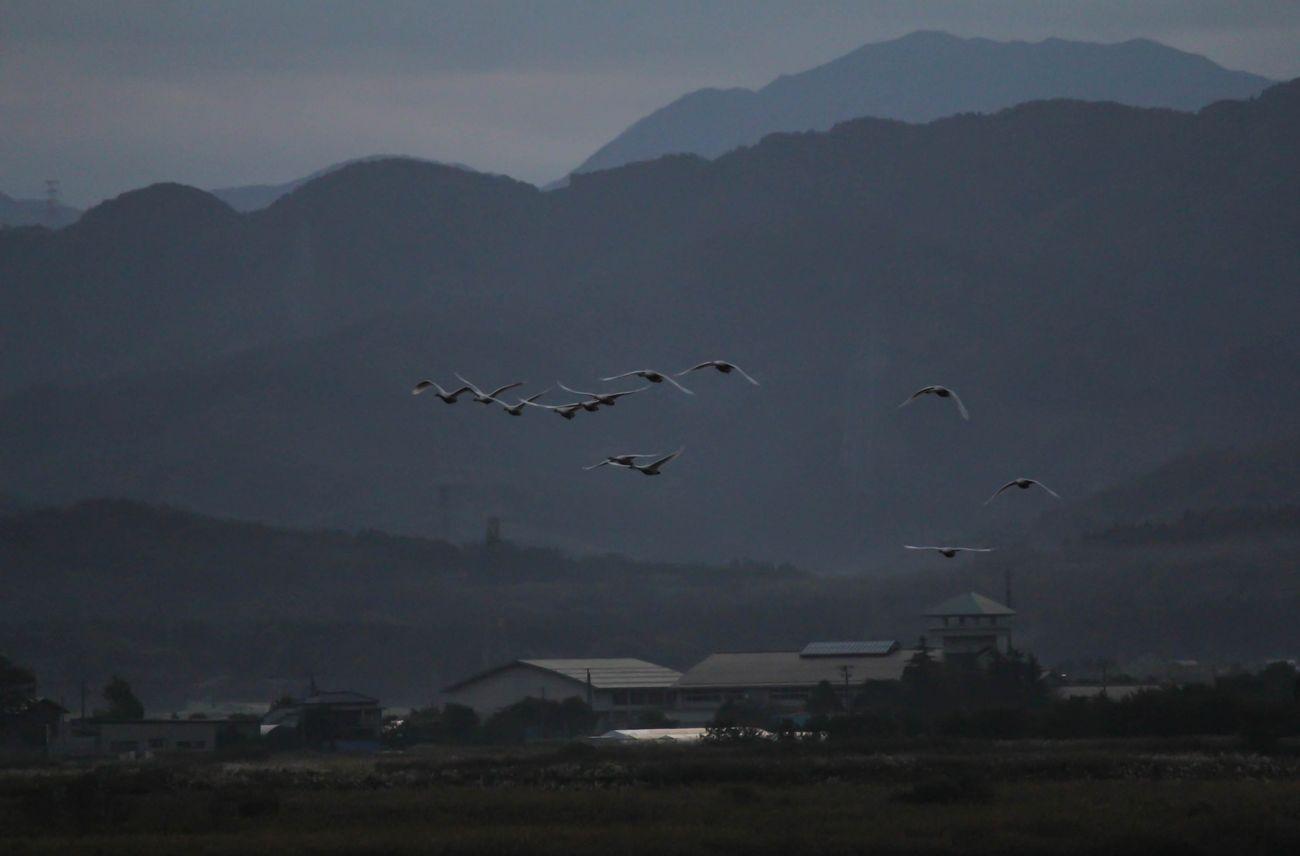 2014・10・16福島潟